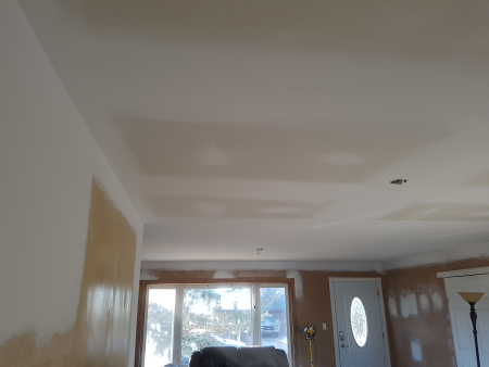 House Renovation for Smooth Ceiling in Living room, kitchen area